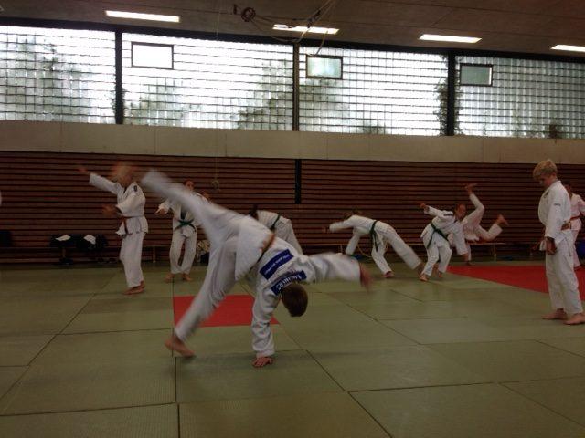 Auch der Radschlag gehört zum Judosport. Allerdings wagten nicht alle diese Figur . . .